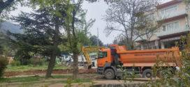 Dedeler Parkı'nda hukuk hiçe sayıldı, yıkım başladı