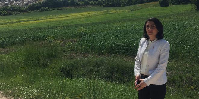 Bursa Milletvekili: Yeşil Bursa Beton Bursa'ya dönüyor