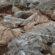 Gölyazı'daki Nekropol ve Kutsal Alan kazıları sona erdi