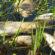 Balık ölümlerinin araştırılması için bölge halkı harekete geçti
