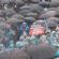 İşçiler MESS dayatmalarına karşı sokakta
