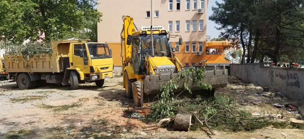 İmam Hatip yapmak için okul bahçesindeki ağaçları katlettiler